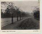 Click image for larger version.  Name:Railings.JPG Views:244 Size:73.4 KB ID:16829